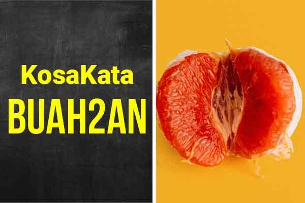 bahasa korea kosakata buah buahan img