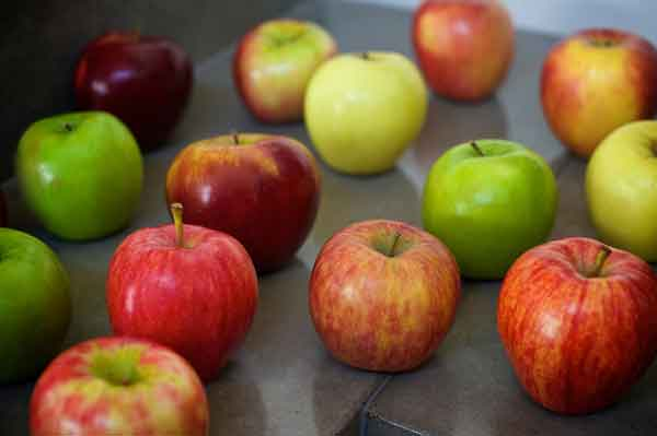 "Tes Uji Kemampuan ""Bilangan/Angka"" Korea - kosakata bilangan buah apel image"