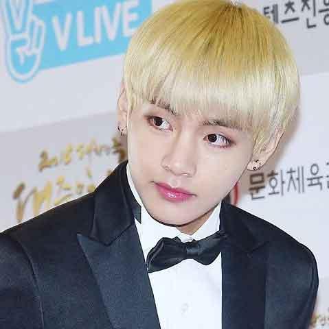 Tebak Lagu dari Gaya Rambut Member BTS - foto hairstyle lagu bts Blood Sweat and Tears image