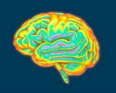 Tes Psikologis Kejiwaan – Inisiatif dan Kreativitas