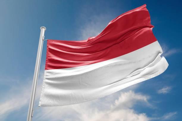 kosakata bendera negara indonesia img