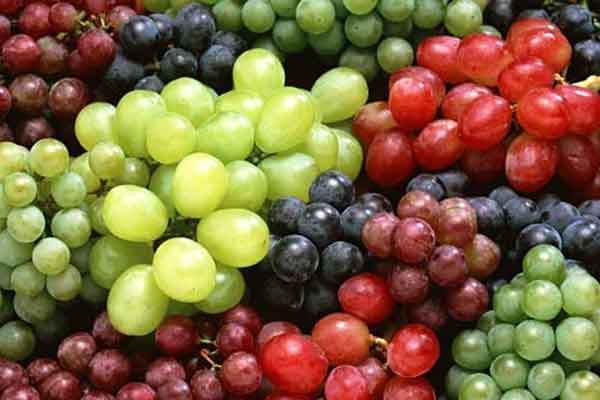 kosakata bahasa korea buah anggur img
