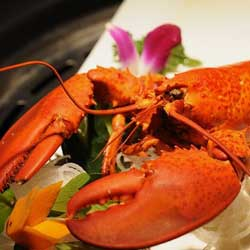 lobster makanan seafood korea jpg