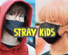 foto sampul kuis-kpop-stray-kids indonesia